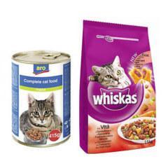 Hrana si accesorii pisici